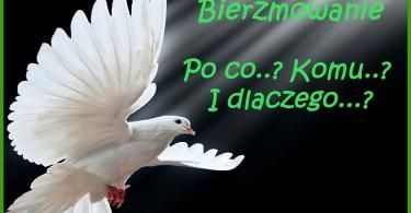 baner1
